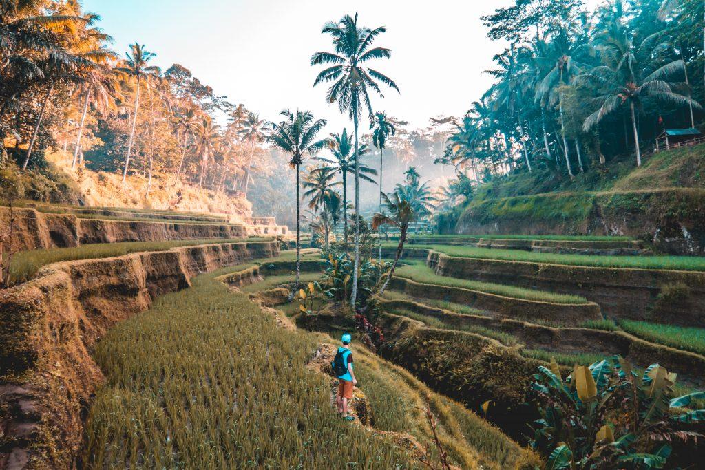 Asia-Pacific-1024x683 今後の観光産業の動向